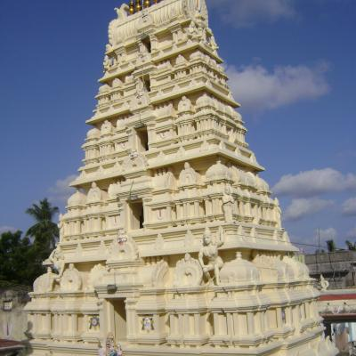 Slns Temple Pvkalathur Full View Of Gopuram