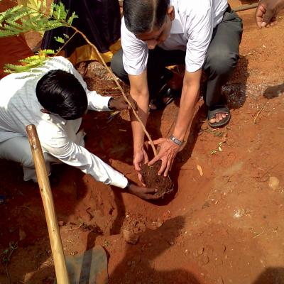S.g.subramanian Dpf Trustee Planting A Tree In The Garden